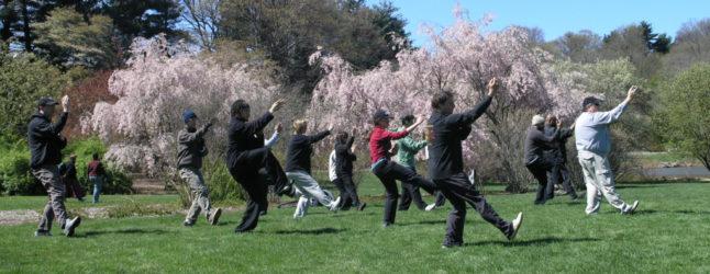 Beneficios del Tai Chi en la tercera edad